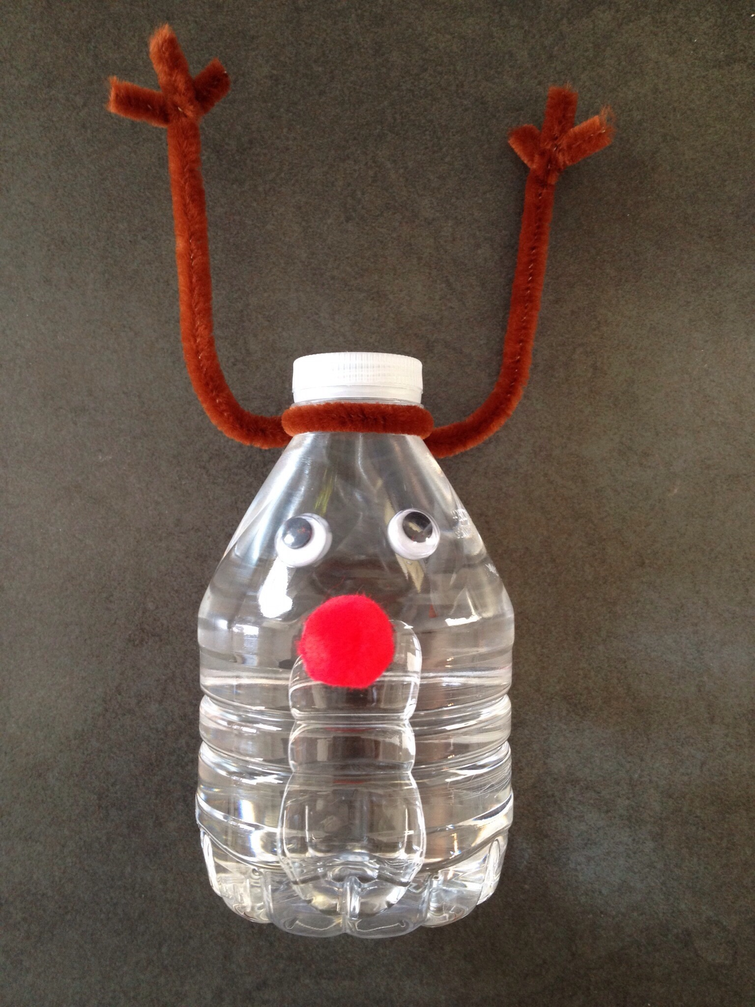 Christmas Crafts With Water Bottles
